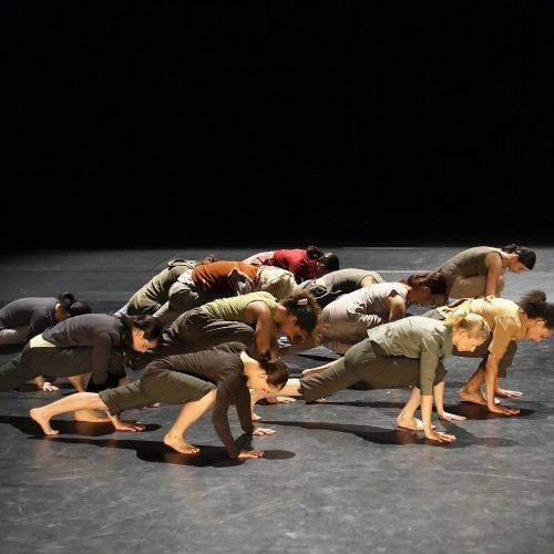 Ballet contemporâneo: onde surgiu e quais as características?