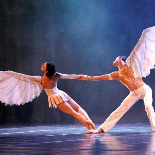 Conheça os tipos de bailarinas para se profissionalizar